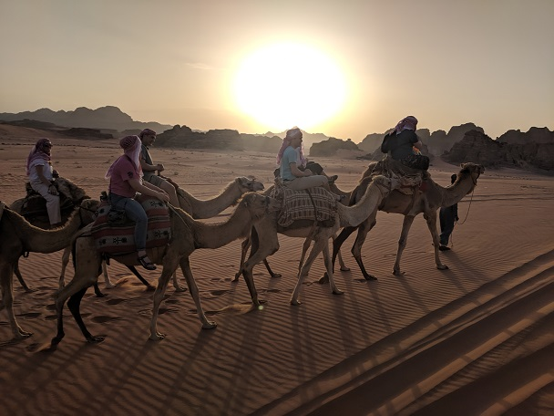 Middle East Picture with Camels