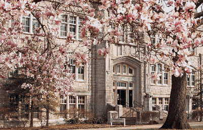 Thumbnail image: UCM campus in the Spring