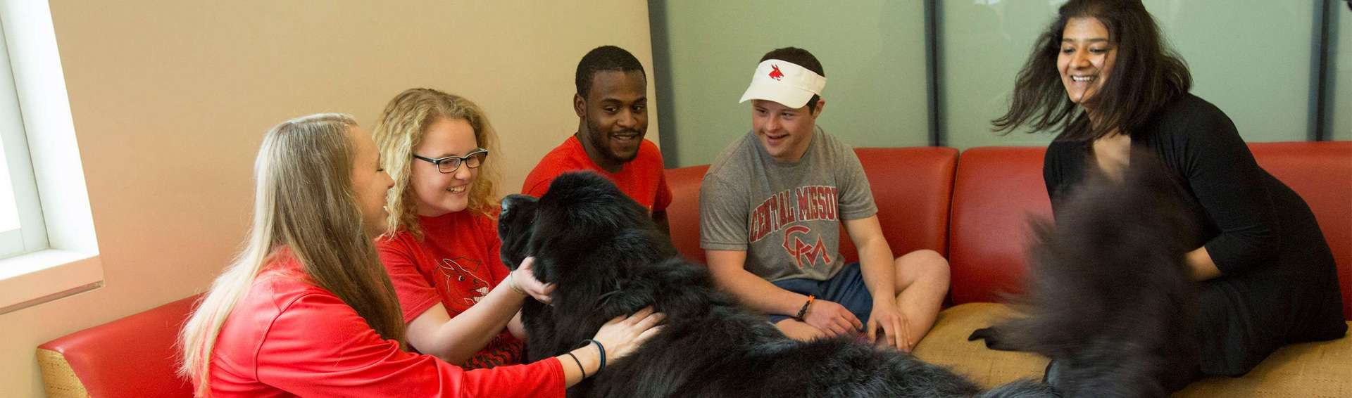 Students in the student rec center with UCM therapy dog.
