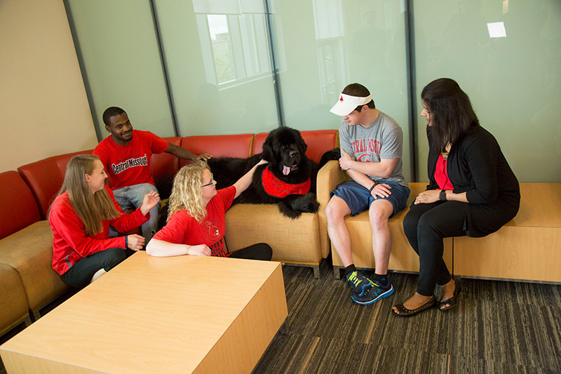Students chatting and petting large black service dog