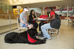 students sitting in Student Recreation and Wellness Center with service dog